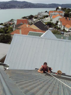Roof repair using harness